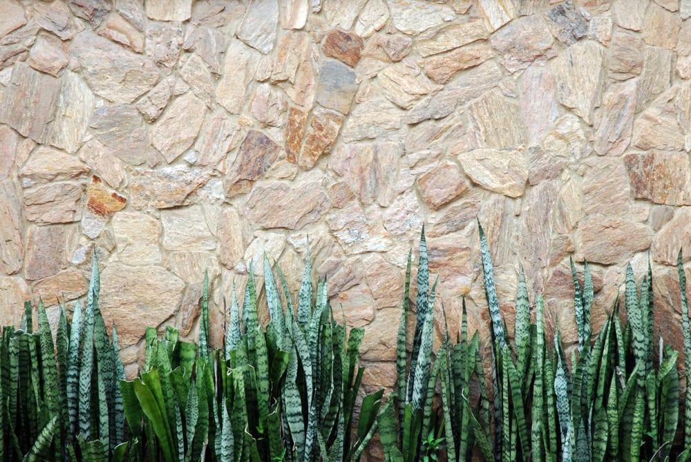 planta-para-apartamento-espada-de-sao-jorge-loft