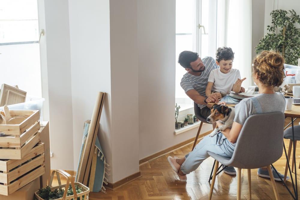 primeiro filho-cachorro-apartamento-loft