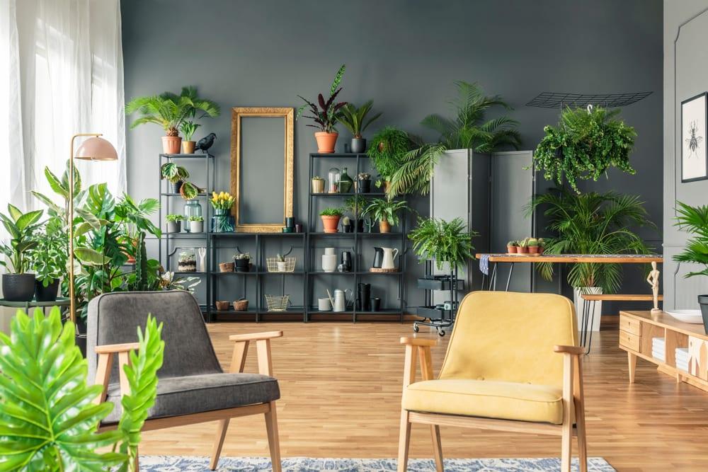 salas-decoradas-urban-jungle-loft